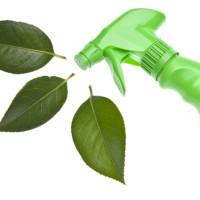 Mosás és tisztítás - Telki biobolt